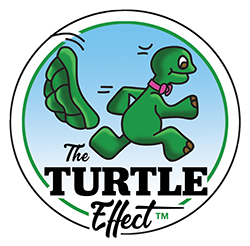 The TURTLE Effect Foundation